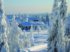 Lapland... beautiful!