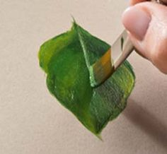 Learn to Paint a leaf with Priscilla Hauser and FolkArt paint #plaidcrafts