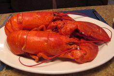 Photo #1 of a Slideshow on Seafood Dishes in the Boston Area and New England. http://hiddenboston.com/foodphotos/ten-seafood-2012-1.html