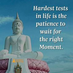 Patience to wait for right moment
