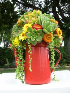 Succulent Wedding Bouquets &Accessories - Succulent Bouquets