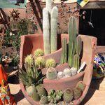 DÉCORATIONS ORIGINALES AVEC LES POTS EN TERRE CUITE!VOICI 20 IDÉES POUR VOUS INSPIRER... Décorations originales avec les pots en terre cuite. Voici 20 idées créatives pourréaliser de superbes décorations avec les pots en terre cuite! Laissez-...