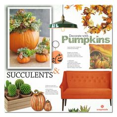 """""""Decorate With: Pumpkins and Succulents"""" by alexandrazeres ❤ liked on Polyvore featuring interior, interiors, interior design, home, home decor, interior decorating, MANGO, Improvements, Dot & Bo and The French Bee"""