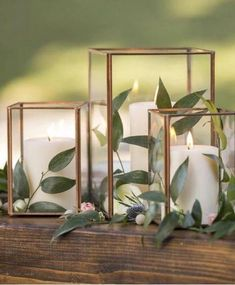 Copper Metal & Glass Taj Cube Votive Holder 3 75 Tall x 3 25 Wide is part of Wedding decorations - Find Copper candle holders and vases at Afloral com This glass cube box is perfect for a succulent terrarium Shop Now Wedding Table Centerpieces, Diy Wedding Decorations, Flower Centerpieces, Centerpiece Ideas, Copper Wedding Decor, Simple Table Decorations, Terrarium Centerpiece, Simple Centerpieces, Wedding Table Arrangements