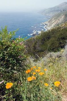 Rv Camping On The Northern California Coast