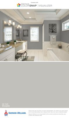 I found this color with ColorSnap® Visualizer for iPhone by Sherwin-Williams: Silverplate (SW 7649).