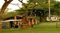 Nelspruit camp sites and caravan Parks for camping in Nelspruit are available at Lakeview Lodge for a real family holiday Lake View, Campsite, Caravan, Symbols, Park, Plants, Camping, Parks, Plant