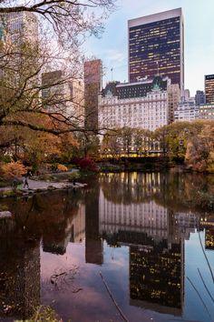 N.Y.M. — New York City Vibes - N.Y.M....
