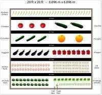 garden layout template