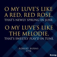 Scotland, Robert Burns, Red Red Rose, wall art Robert Burns, Rose Wall, Rock Island, Heaven On Earth, Red Roses, Brave, Islands, Rocks, Poetry