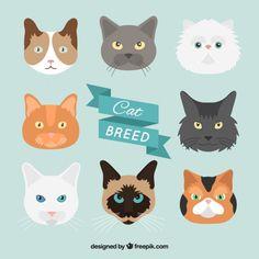 Mão pacote raça de gato desenhada Vetor grátis