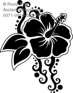 Poster Print of Silhouette of A Hibiscus Flower