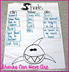 Shark tree map!   Great for an ocean unit or shark unit!