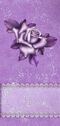 Wallpaper Backgrounds, Wallpapers, Coats For Women, Bloom, Abstract, Rose, Womens Fashion, Pretty, Floral