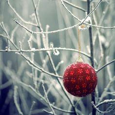 after christmas by ~LittleBlackUmbrella