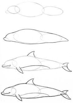 Manera de dibujar un delfin.