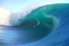 Surfing a Mammoth Wave - Jessica Blain-Lewis by jessicablainlewis