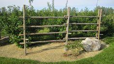 Ladder Decor, Yard, Outdoor Structures, Gardening, Diy, Patio, Bricolage, Lawn And Garden, Do It Yourself