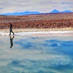 Lagoas Escondidas de Baltinache  A água dessas lagoas é proveniente do degelo das cordilheiras que percorre o Salar do Atacama por túneis subterrâneos carregando sal e minerais que a deixam com maior densidade impedindo que as pessoas afundem!  E quando não há vento o reflexo da água deixa um efeito ainda mais especial!  #QueroViajarMais #QVMnoChile #atacama #desertodoatacama #aylluatacama #lagunasescondidas #baltinache #chile #visitchile #chile_natural #chile_360 #chileimages #chilegram…