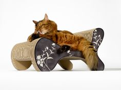 cats just love the quality - ecofriendly and odorless cat furniture from Germany