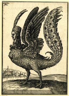 Harpy - Melchior Lorck  1582  woodcut (from a series of 127)  232 mm x 162 mm  A harpy; facing left; bird-like creature with a long tail and human head; wearing a hat with two long feathers; landscape background with a town on left.