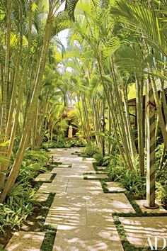 """For clients on Hawaii's Kona Coast, architect Mark de Reus and his team achieved an American Arts and Crafts aesthetic within a tropical setting. Landscape architect Don Vita conceived the """"palm walk"""" to connect the main house and the guesthouses. A Song Dynasty stone tiger sits at rear; the bronze sculpture, right foreground, is by Delos Van Earl 