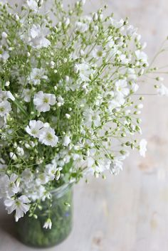 ©La mariee aux pieds nus - Gypsophile de jardin/ I think I planted these last year. Small White Flowers, Little Flowers, Wild Flowers, Spring Flowers, Flower Power, Moon Garden, Deco Floral, White Gardens, Garden Trees