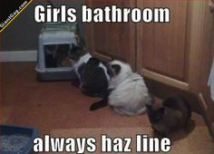 Girls Bathroom, Always Haz A Line | Click the link to view full image and description : )