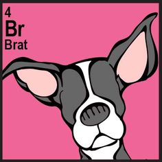 The Daily Mutt – Brat | The Dog Table