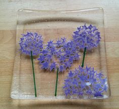 Allium glass trinket dish fused glass trinket bowl hand