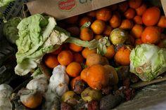Tempos Difíceis  : Falta Alimento no país, por que boa parte vai para...