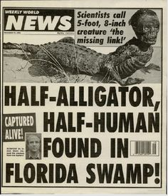 Bizarre alligator human hybrids believed to wander Florida swampland's - Freak Lore Fake News Headlines, Funny Headlines, Newspaper Headlines, Stupid Images, Black Light Posters, Florida, Weird News, Cryptozoology, Weird Stories