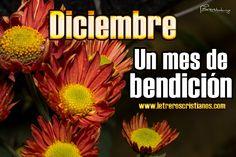 Diciembre-un-mes-de-bendicion