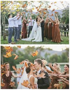 Fall wedding with leaves