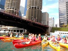 kayak downtown chicago always wanted to do this!
