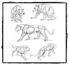 25 belos desenhos de animais para a sua inspiração 13
