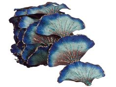 GINKGO LEAVES BEADING - Google Search