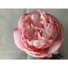 https://www.alibaba.com/product-detail/Beautiful-Artifical-Silk-Flowers-peony-for_60622998745.html?spm=a2700.7724838.2017115.45.463b91cbzSZ7jZ&s=p
