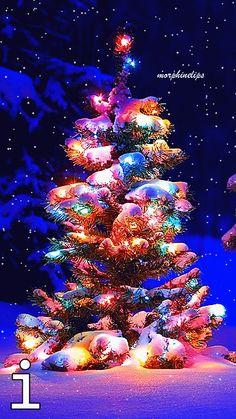 christmast_4i7crZzU.gif (360×640)