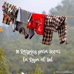 Si aún no te decides a secar la ropa al sol, aquí te traigo 10 razones que te pueden hacer cambiar de opinión para llevar una vida verde y gastar menos.