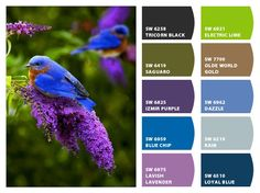 Colors That Go Together Custom Colors That Go Together  Colors That Go Togetherjana  Color Inspiration Design
