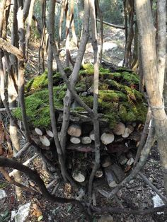 A Year in a French Forest: Sculpture 17 - Spencer Byles sculpture