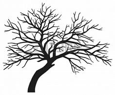 scary bare black tree silhouette (tree without leaves, tree silhouette) Stock Photo - 15840833