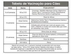 Tabela de Vacinação para Cães.