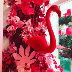 Flamingo in Baby Dior window display