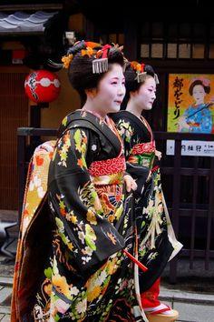 京都の花(まめ春・まめ柳さん)