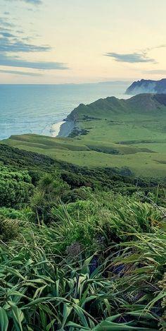 East Cape farmland -