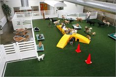 Modern Hotels for Dogs Impress with Luxurious Interior Design Ideas , - luxury dog kennel Pet Boarding, Dog Boarding Kennels, Animal Boarding, Hotel Pet, Indoor Dog Park, Indoor Play, Canis, Luxury Dog Kennels, Dog Kennel Designs