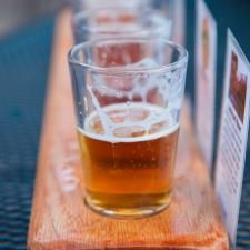 3 Hops That Make Your Beer Taste Like Candy