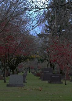 rose city cemetery..